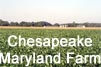 Get a description of the Chesapeake Farm scenario