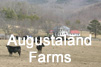 Get a description of the Augustaland Farms scenario