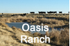 Oasis Ranch Icon